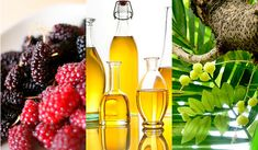 Find Your Inner Calm: 7 Ayurvedic Foods for Stress | SpaFinder Wellness Blog