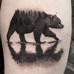 "160 Likes, 17 Comments - TylerATD (@selfdiagnosed) on Instagram: ""#bear #tattoo fun from a few weeks ago. #whistlertattoo #southeasttattoosupplies"""