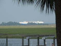 ships coming in from the Atlantic ocean through the Savannah River into Savannah.  They are HUGE.