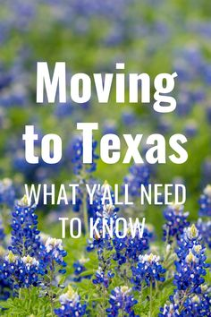 Moving to Texas, moving to Houston or moving to Dallas? Texas is one of the top move destinations in the country. Here's what you need to know when you are relocating to Texas. Things are different here! Moving To Dallas, Moving To Texas, Moving Out, Texas Vehicle Registration, Best Places To Move, Texas Things, Electrical Plan, Dallas Texas, The Good Place