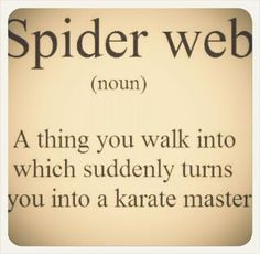 What is a Spider Web? :)