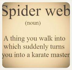 Spider Web LMAO!!!!!!!!!!!!!!!!!!!!!1