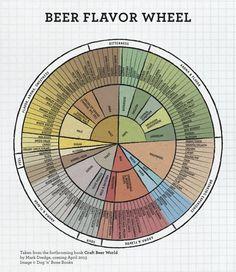 beer flavor wheel   craft beer world   mark dredge   image dog 'n' bone books