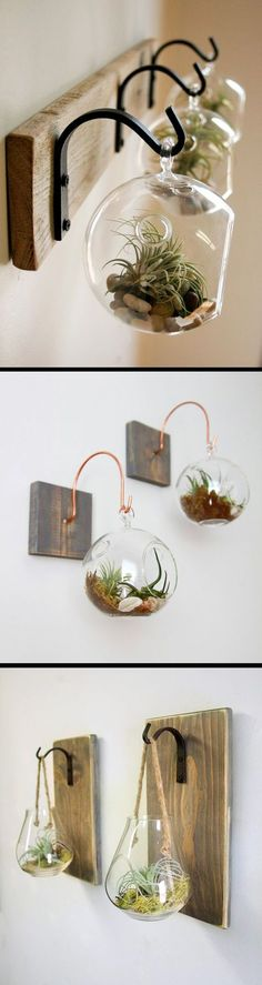 terrarium ideas for air plants and succulents. A simple yet elegant home decor item to spruce up your living spaces.Hanging terrarium ideas for air plants and succulents. A simple yet elegant home decor item to spruce up your living spaces. Elegant Home Decor, Elegant Homes, Modern Fall Decor, Contemporary Interior, Deco Nature, Deco Floral, Planting Succulents, Succulent Plants, Succulent Terrarium