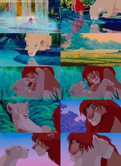 Can you feel the love tonight? {The Lion King} Lion King Quotes, The Lion King 1994, Lion King Fan Art, Lion King Simba, Simba Disney, Disney Lion King, Disney And Dreamworks, Simba Et Nala, Hilarious Pictures