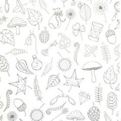 Enchanted Forest Coloring Book By Johanna Basford Garden Shapes