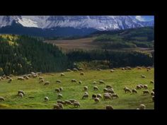 J. S. Bach: Cantata Nº 208, 'Sheep May Safely Graze'