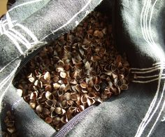 DIY: Make your own buckwheat hull pillows by ApartmentTherapy.com Buckwheat Hull pillows can support both neck and back while having better air circulation than conventional fillers. This means cooler comfort in warm weather.