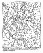 mindware color counts - Google Search | Coloring pages for adults ...