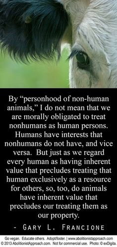 Animal welfare and animal rights essay examples Argumentative Essay on Animal Rights essaysAnimal testing is used to protect us humans from a wide range of chemicals and products, including drugs, vaccines. Reasons To Be Vegan, Animal Agriculture, Vegan Quotes, Why Vegan, Stop Animal Cruelty, Vegan Animals, Animal Welfare, Animal Rights, Going Vegan