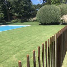 Steel Rod Pool Fence by PML Landscapes Pool Cabana, Curl Curl, Front Fence, Pool Fence, Beautiful Pools, Steel Rod, Backyard Landscaping, Swimming Pools, Deck