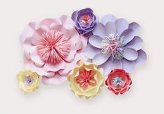 Paper Flower Backdrop Giant Paper Flowers Choose by APaperEvent