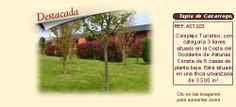 AST923 Tapia de Casariego. Comarca Eo-Navia. Asturias.  Apartamentos turísticos en venta. http://www.lancoisdoval.es/hoteles-con-encanto-en-venta.html