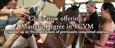 The Chi Institute - I'll be there next week sharing PET | TAO w/ TCVM vets.  PET | TAO makes TCVM Food Therapy easy!