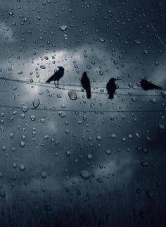 Op het moment dat Bruno stikt in de gaskamer begon het serieus te regenen. Dit roept al een bepaalde sfeer op.                                                                                                                                                      More