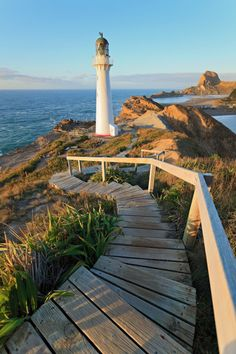 Castlepoint Lighthouse ~ New Zealand
