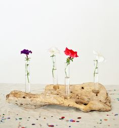 DIY: driftwood centerpiece