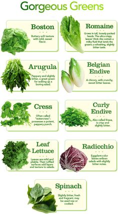 Healthy Lifestyle Change : Differnt types of Lettuce and other salad greens. Types Of Lettuce, Types Of Salad, Cooking Tips, Cooking Recipes, Eat Better, Food Charts, Fruits And Veggies, Types Of Vegetables, Vegan Recipes