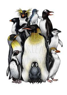 Penguin Obsession Illustration A4 Print on 270gsm by LyndseyGreen