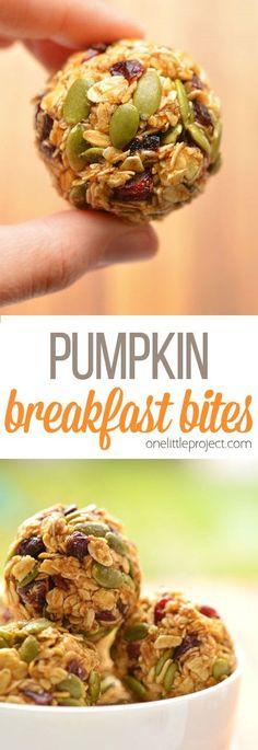 No-Bake Pumpkin Breakfast Bites