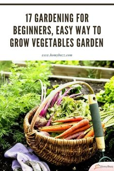 17 Gardening for Beginners, Easy Way to Grow Vegetables Garden - HomyBuzz #homybuzz #gardening #fall #halloween #outdoordecor Sugar Snap Peas, Edible Garden, Easy Diy Crafts, Gardening For Beginners, Growing Vegetables, Hydroponics, Vegetable Garden, Decorating Tips, Harvest