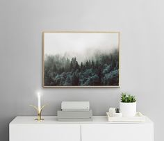 Poster with a photo of nature and a forest | Print | Desenio