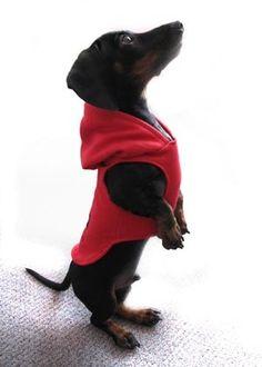 Too cute in that hoodie!!