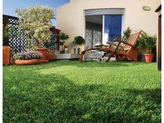 Catral Garden, specialist in garden, cultivation and decoration Patio, Garden, Outdoor Decor, Home Decor, Artificial Turf, So Done, Colors, Garten, Decoration Home