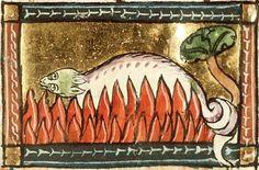 """Une salamandre jetée dans le feu, sans brûler. 1350. (see link for more about the salamander in legend)  Gringoire sees Esmeralda """"...ses yeux de flamme, c'était une surnaturelle créature. —En vérité, pensa Gringoire, c'est une salamandre...."""" (II, iii, 137)"""