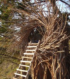 Human Nest designed by Jayson Fann of the Spirit Garden, at the Treebones Resort, Big Sur, California