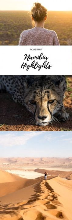 Round trip by rental car to the highlights of Namibia. Traveling in Africa between deserts, national parks and wild animals. Africa Destinations, Travel Destinations, Koh Lanta Thailand, Places To Travel, Places To Visit, Africa Travel, Namibia Travel, Round Trip, Travel Around The World