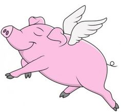 The Flying Pig - Funny Fair Games Fundraising
