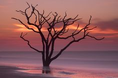 Edisto Dawn by Tony Sweet on 500px