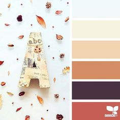 today's inspiration image for { autumn tones } is by @in_somnia_ ... thank you, Judith, for sharing your incredible photo in #SeedsColor !