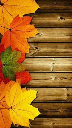 Autumn Leaves and Wood Wallpaper Wallpaper Texture, Wood Wallpaper, Nature Wallpaper, Fall Leaves Wallpaper, Autumn Iphone Wallpaper, Cute Fall Wallpaper, Fall Leaves Background, Trendy Wallpaper, Pretty Backgrounds