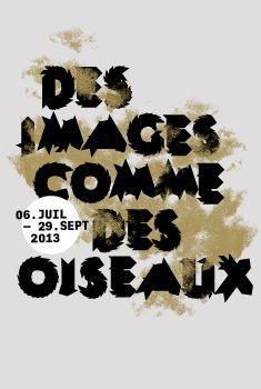 Identity for Des images comme des oiseaux — Marseille, La friche la belle de mai commissariat : Patrick Tosani & Pierre Giner — lavitrinedetrafik.fr
