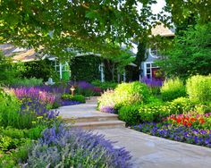 Hot to design a colorful flower bed - Traditional Landscape by Designscapes Colorado Inc.