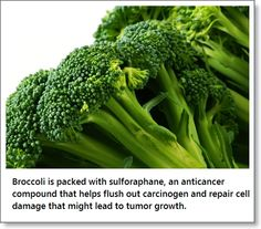 AMOG Food of the Week: Holy Broccoli Helps You Fight Cancer!