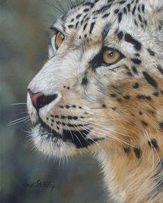 Oil Painting By David Stribbling, www.davidstribbling.com