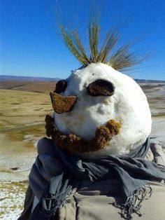 South African Style Snowman - June 2014 - Grasses as Mohawk, Cow Patties as eyes....SO creative June 2014 Snowy Winter in Cape Town region