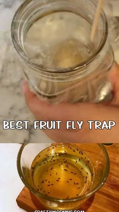 Best DIY Fruit Fly Trap - how to kill fruit flies fast and easy in the kitchen! Ingredients step by step how to catch fruit flies flying around. They are so annoying! Fruit Fly Killer, Best Fruit Fly Trap, Homemade Fruit Fly Trap, Fruit Fly Traps, Mosquito Trap Homemade, Best Fly Trap, Homemade Gnat Trap, Homemade Fly Spray, Fruit Flies In House