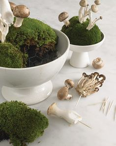 Take a cue from spring foragers and bring the lush woodland carpet to the dinner table. Assorted mushrooms, including cremini, Trumpet Royale, honshimeji, and enoki, rise from a bed of cushion moss and lend an unexpected touch of whimsy. A wide ironstone tureen showcases the arrangement and helps anchor it among the table's place settings.Cushion moss is available from florists. If you use moss from your yard, return it to its natural spot after you disassemble the arrangement. Individual...