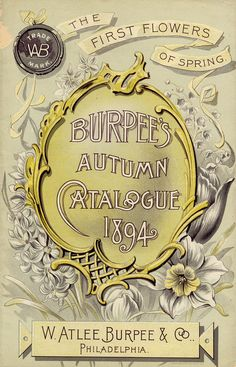 Smithsonian archives Burpee's seed catalogue Vintage Diy, Look Vintage, Vintage Labels, Vintage Ephemera, Vintage Cards, Vintage Postcards, Vintage Images, Vintage Prints, Vintage Pictures