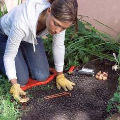 Tips for Easier Gardening- If you love gardening but your life is a busy place, youre going to love this batch of great gardening tips that will help you plant, weed and water your garden more quickly. From bringing plants home from the nursery to easier watering and pruning techniques, these tips will help you plant and maintain a gorgeous garden with less effort. Less weeding. Great site!! Pin now, read later.