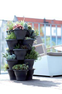 vertical gardening, perfect for small balconies #elho #vertical #garden #corsica #elhofeeling #outdoor #fun #succulents #small #places #home #living