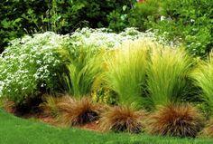 Zdjęcie numer 12 w galerii - 23 pomysły na tani ogród. Jak urządzić niedrogi ogród?