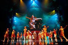 Cirque du Soleil: Performer Dies during the Show