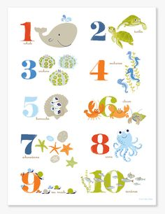Numbers and Sea Life - perfect. Really cute site!