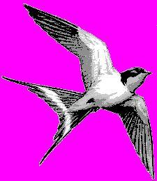 zwaluw.gif (225×260)