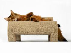 design cat furniture - cat-on Molekular Fauteuil - the cat scratching sofa